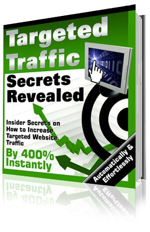 targeted web site traffic